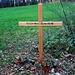 Grabstätte bei der Grimstelucke (599m). Schön wenn seine die letzte Ruhe in der Natur findet.