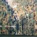 beim Seehof am Achensee