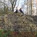Ruine Rosenberg, ein Kletterparadies für die Kinder.
