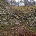 Das untere Wändchen kann im Aufstieg wohl auch rechts, in besser gestuftem Gelände, umgangen werden.