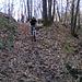 entriamo nel bosco