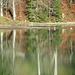 stimmungsvolle Spiegelung im Lecknersee