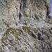 nur der Einstieg ist schuttig und auch steinschlaggefährdet; auf schönen Felsbändern gehts nach oben
