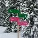 Die Route auf den Furggelenstock ist wegen einer Nuturschutzzone bestens markiert. Sie führt meist in einer breiten Waldschneise bergauf.