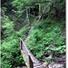 Podul spre  pestera Meziad