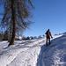 Nei pressi dell'Alpe Cadonigo.