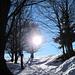 giochi di luci all'alpe Spessola
