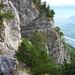 Fürstensteig mit Rheintal