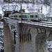 Lötschberger auf dem Baltschieder-Viadukt