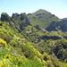 Der Pico Ruivo: Jetzt ist ´s nicht mehr weit
