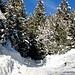 Weg zum Gipfel Kranzberg