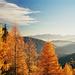 Indian Summer, hinten die Julischen Alpen