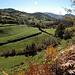Wiesen-Bewässerungssystem