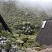 Le capanne di Horombo sono circondate dalla vegetazione