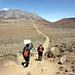 Il lungo tratto pianeggiante nella tratta Horombo - Kibo