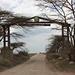 Ingresso a Serengeti