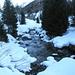 Un Ticino ancora giovane si fa strada nella neve