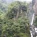 Wasserfall und Regenwald