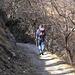 Wanderweg ab Loco