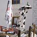 Funny cow in Vnà