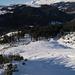 Die letzten NW Hänge auf 1800m mit bestem aufgebauten Schnee!