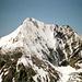 """Die """"Schaumrolle"""" auf der Königsspitze - die gibt's heute nicht mehr? Der Normalanstieg erfolgt von links, entlang dem Südgrat"""