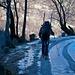 1h Skier tragen von Bondo Richtung Laret erwartet man nicht unbedingt auf einer Skitour im Januar.