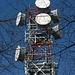 Antennen hinterm Spinnennetz