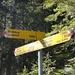 bei diesem Wegweiser (wenige Meter unterhalb P. 1527) würden wir ein nächstes Mal den kurzen steilen Absteig zum Bänderweg zur Bire nehmen, und anschliessend weiter und hoch zum P. 1527 gehen