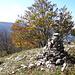 Gipfelsteinmann des Oberdörferberg 1297m