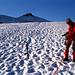 Fotohalt:  Die breite Trampelspur zeugt von der Beliebtheit des Mte.Cevedale, dessen Gipfelgrat sich gerade noch am rechten Bildrand zeigt.