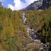 Herbstwald bei der Alpe di Magnello