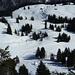 Tiefblick auf die Alp Tierfähderen