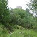 auf dem Weg zur Bergstation der Panoramabahn Elfer