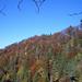 Herbst im Züri Oberland