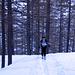 Silvia in salita nel bosco sopra Bord.