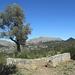 verkarstete Landschaft auf dem Weg zur Finca Mossa