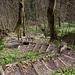 Blick zurück auf die Holztritte