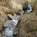 Die Bisse Neuf führt schon Ende März Wasser
