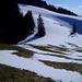 Zürcher Oberländer Spät-Winteridylle