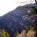 Die legendäre Schwarzenberg-Ostwand offenbart ihr wahres Gesicht – ein Zebra-Gesicht nämlich