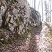 Aufstieg durch den Wald