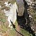nahe Frinvillier (P. 532) beginnt der Anstieg auf den Gratrücken durch diesen Graben