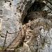 Unterer Eingang der Grotte d'Orjobet