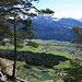 Blick zum Krummsee