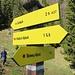 ..... denn wir beschließen, kurz vorher über den aussichtsreichen Steinweg nach Alpbach abzusteigen.