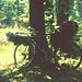 Pause am Waldrand mit Karls Fahrrad Voll aufgepackt wog es etwa 40 kg