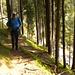 im Aufstieg durch den Spirenwald