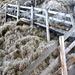 Holztreppen erleichtern den steilen Aufstieg auf den Felszahn der Bire