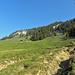Alp Bärlaui
